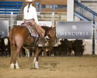 2015 ICHA Futurity and LAE